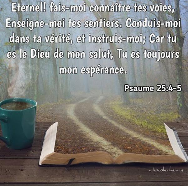Verset de la semaine : Eternel ! fais-moi connaître tes voies, Enseigne-moi  tes sentiers. Conduis-moi dans ta vé…   Psaumes, Parole biblique, Citations  bibliques