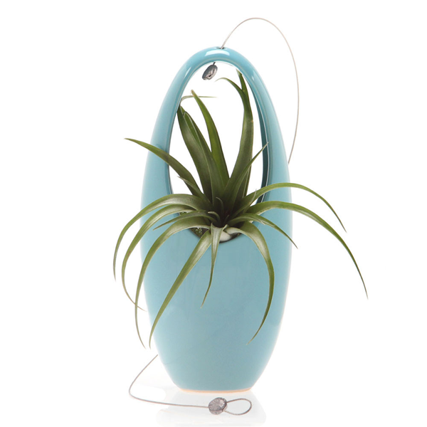 Hanging Aerium Egg- Blue
