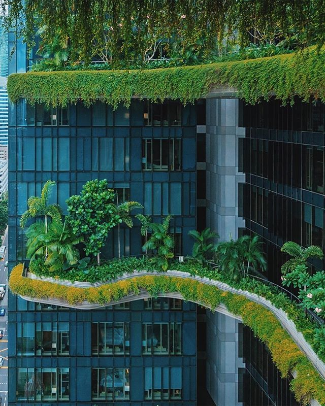 The ecofriendly Park Royal hotel stands out among