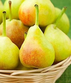 Growing sugar pears