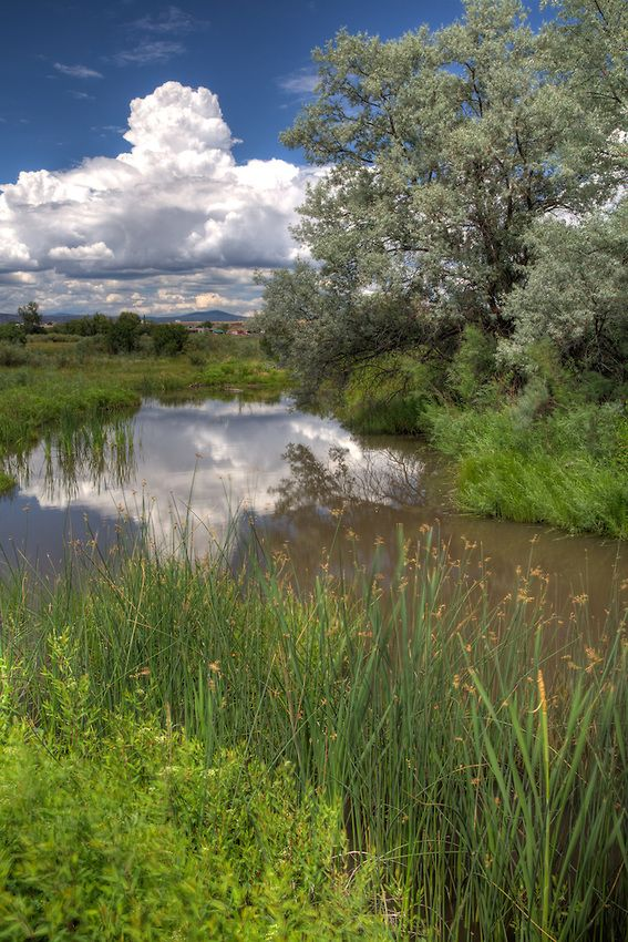 Little Colorado River (10 of 28).jpg | Paul Gill