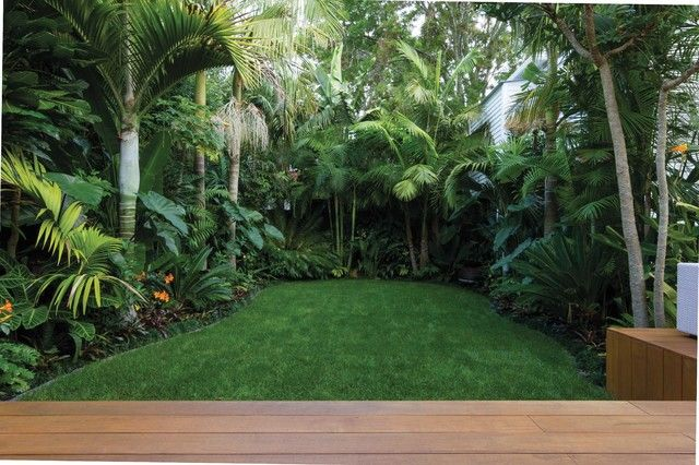 Lush Deep Greens Thick Texture Firecracker Colour Tropical Garden Design Tropical Backyard Tropical Landscaping