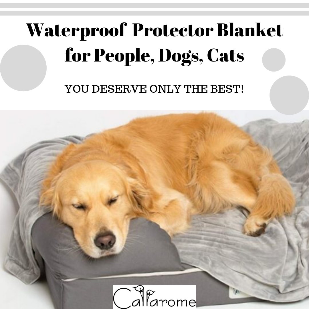 Stupendous The Callarome Waterproof Couch Cover Has Been Tested For Caraccident5 Cool Chair Designs And Ideas Caraccident5Info