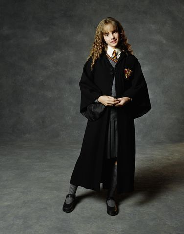 Hermione Granger library-lover and house-elf advocate.  sc 1 st  Pinterest & Brainer Halloween Costumes You Can Shop Right Now | Pinterest ...