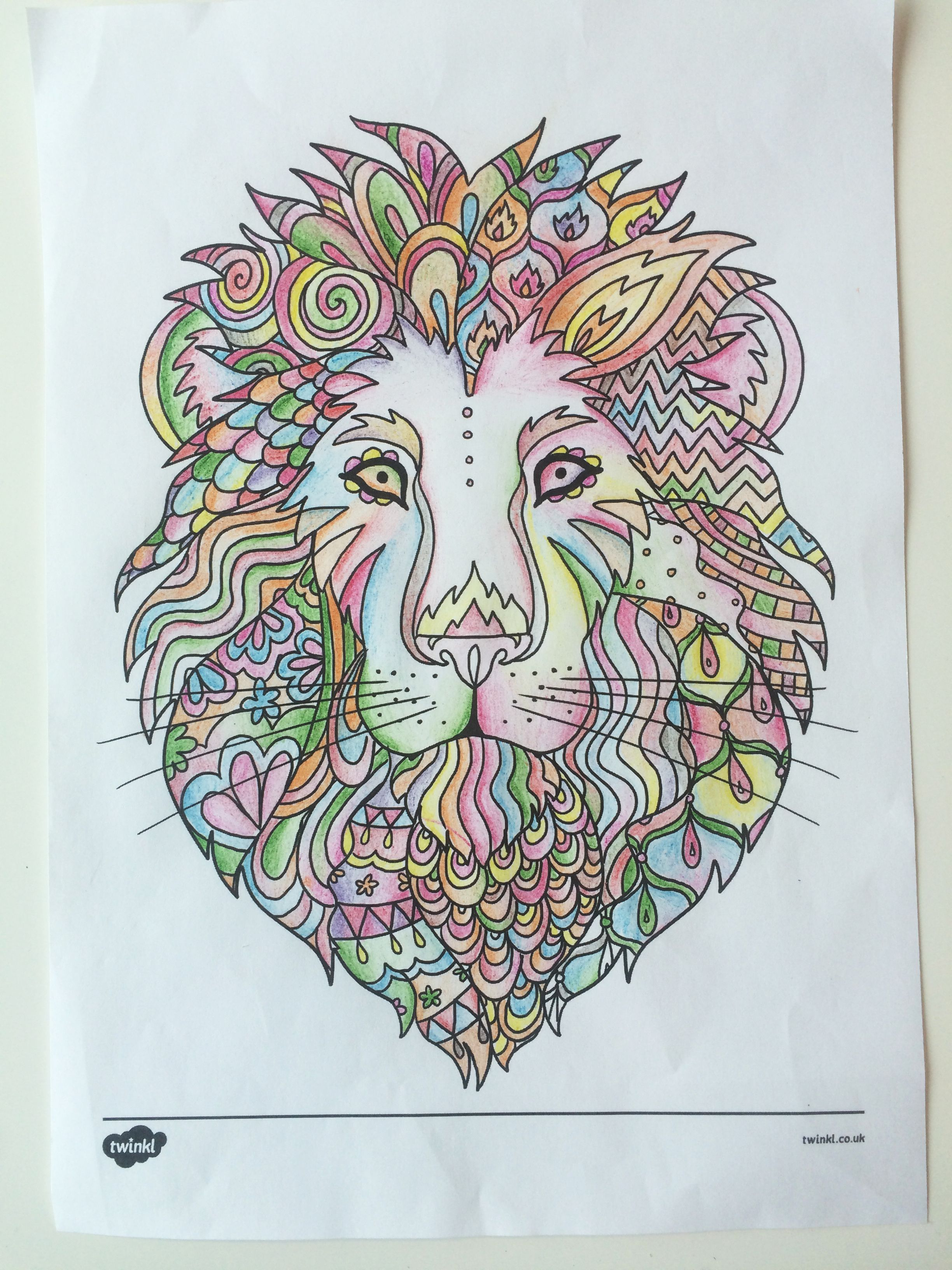Coloring And Drawing Animal Colouring Pages Twinkl