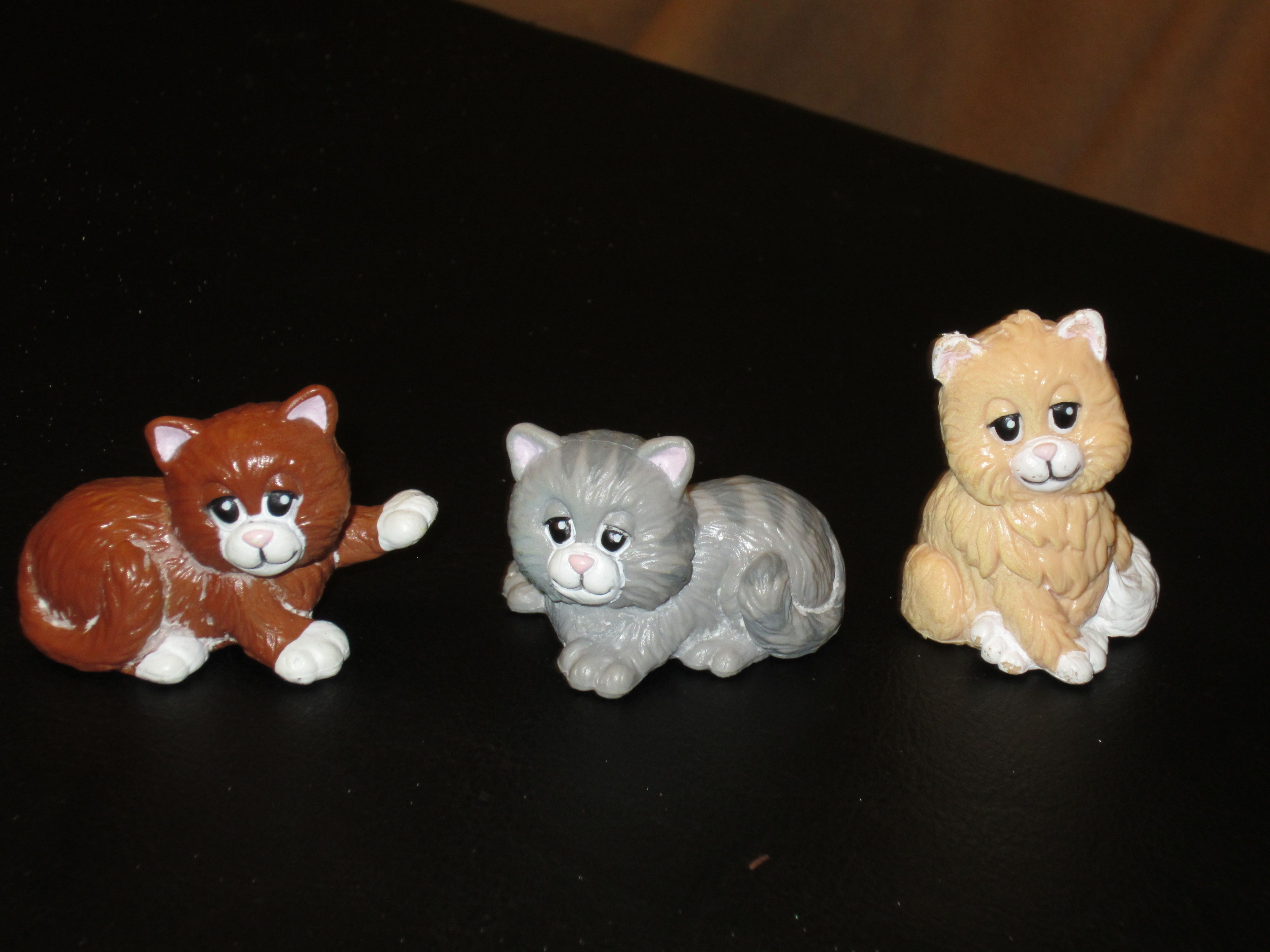 Pound Purries cats. The BEST cats. Pound puppies, Cool