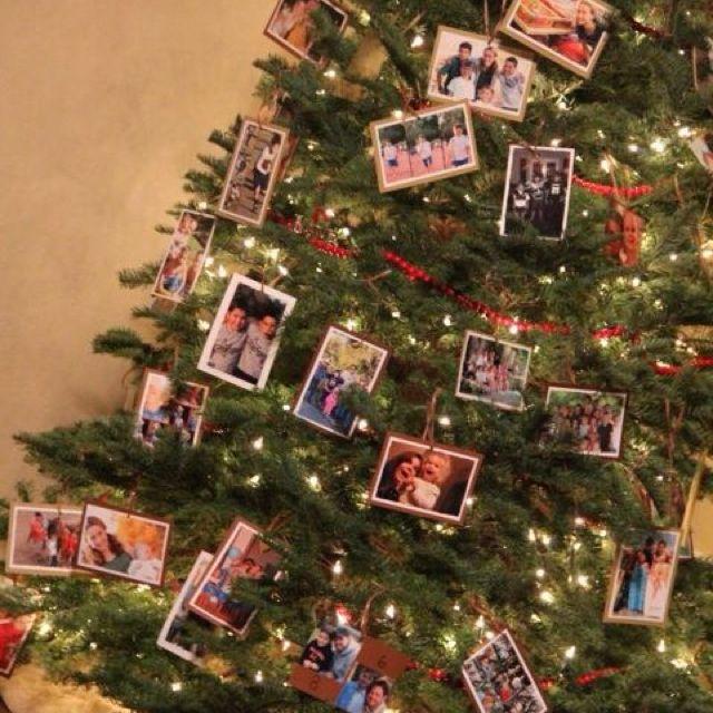 Árvore com fotos dos melhores momentos do ano.
