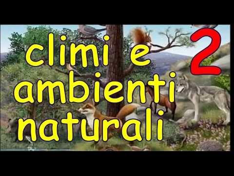 Geografia 3 Climi E Ambienti Naturali Parte 2 Youtube Decor