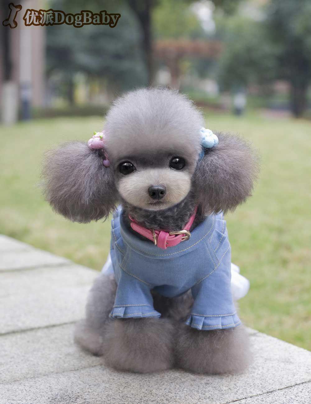 a89e97c0a New arrived Cute Dog Jean Dress Denim Princess Bowknot Dress Skirt Summer Pet  Dog Puppy Clothes Short Sleeve Dress