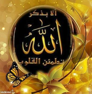 ﺍﻟﺴــــﻼﻡ ﻋﻠﻴــــﻜـﻤـ ﻭﺭﺣﻤـــــﺔ ﺍﻟﻠﻪ ﻭﺑﺮﻛﺎﺗـــــــﺔ ﺍﻟﻤﺤﺒﺔ ﺳﺮ ﻣﻦ ﺃﺳﺮﺍﺭ ﺍﻟﺮﺣﻤﻦ ﻳﻮﺩﻉ ﻣﺎ ﻳﺸﺎﺀ ﻓﻲ ﻗﻠﺐ ﻣﻦ ﻳﺸﺎﺀ ﻣﻦ ﻋﺒﺎﺩﻩ ﻓﺴﺒﺤﺎﻥ Neon Signs Allah Signs