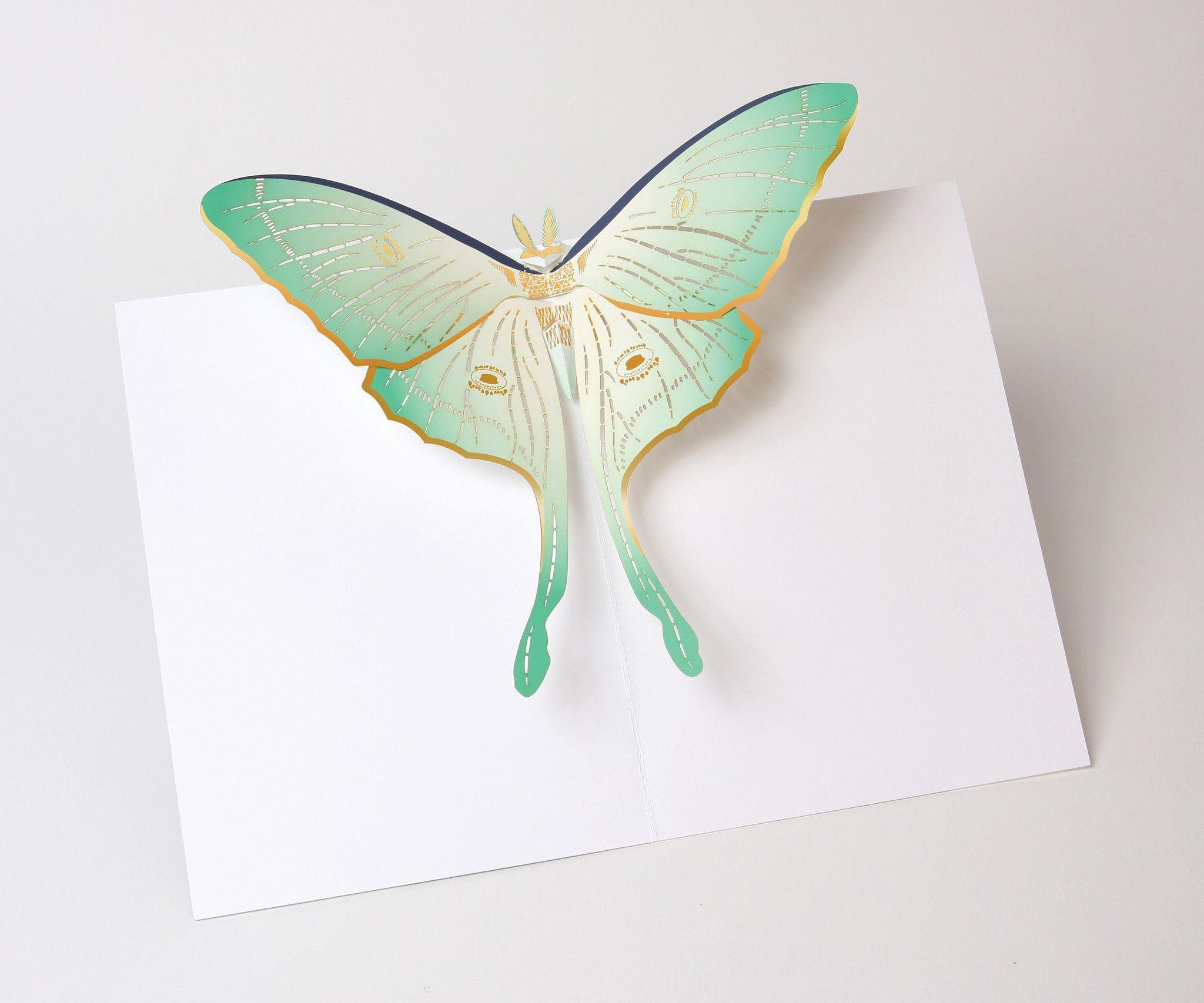 Luna Moth Tattoo, Most Beautiful Butterfly