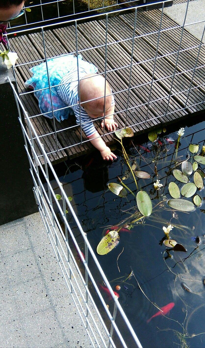Afbeeldingsresultaat voor zelfgemaakte tuinvijver tuin vijvers for Zwemvijver benodigdheden