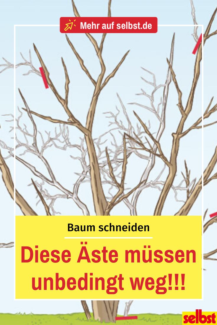 Photo of Cut tree | selbst.de