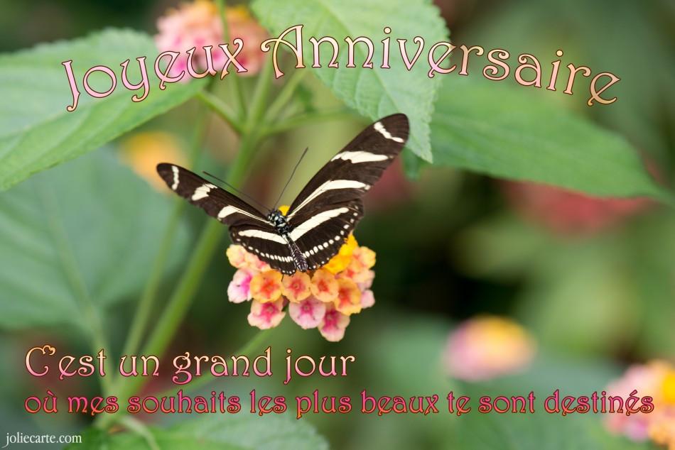 Un Souhait D Anniversaire Pour Mon Amour Luxury Jolies Cartes De Vœux Anniversa Carte Anniversaire Animee Carte Virtuelle Anniversaire Jolie Carte Anniversaire