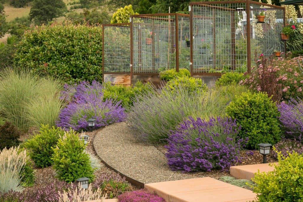 informalsuper flowering shrubs decorating ideas for foxy landscape contemporary design ideas with bushes curved pathway curved walkway garden gravel pathway - Garden Design Kerry