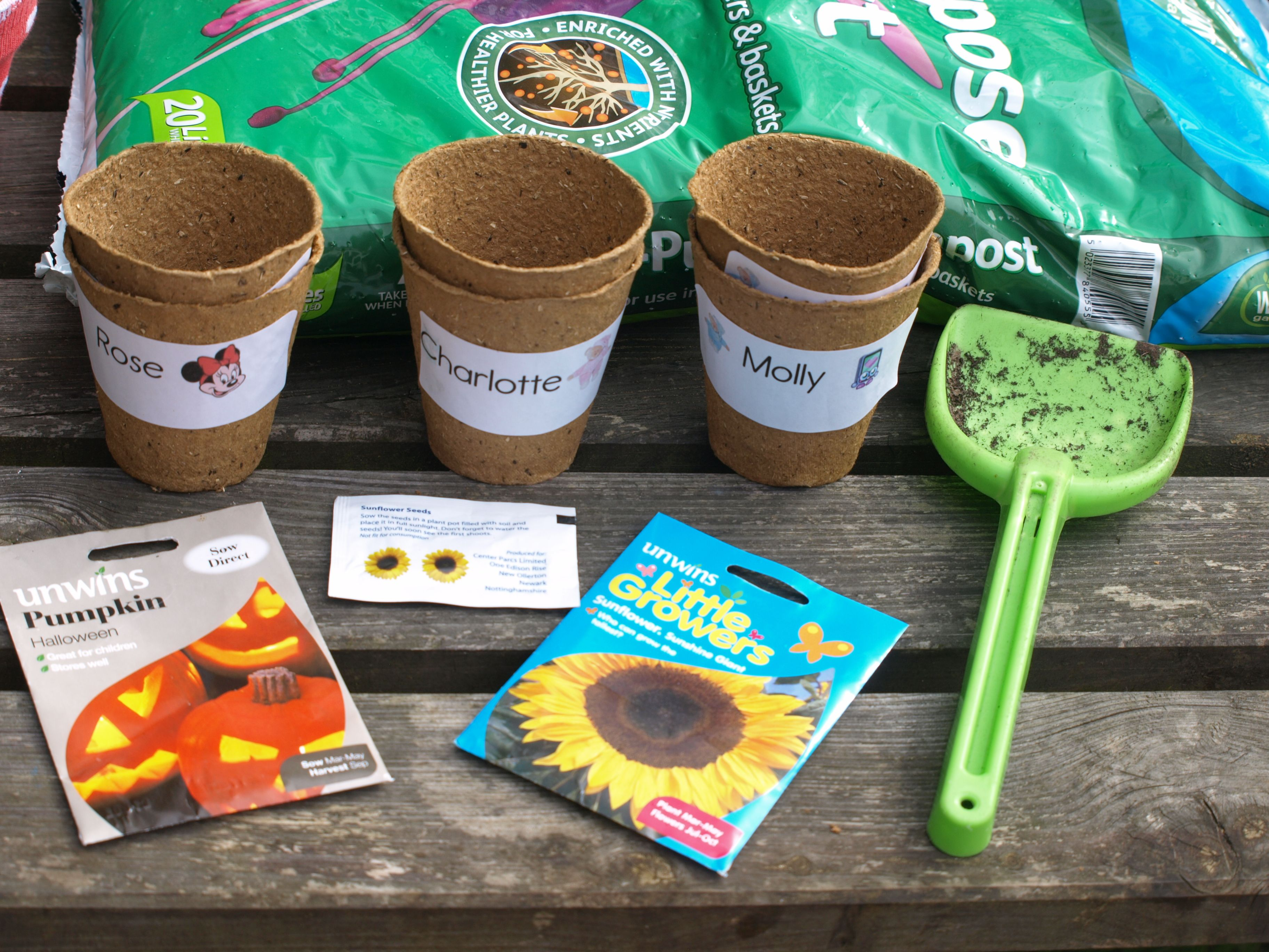 Growing Sunflowers With Toddlers