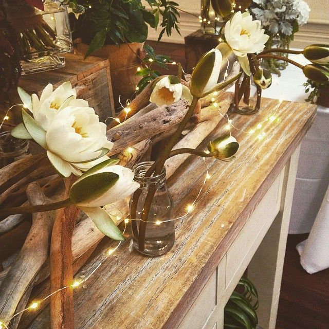 """Water lilies on driftwood.... @bursaria showcase #botanicsmelbourne #botanicsofmelbourne #melbourneflorist #melbourneflowers #melbourneweddings…"""