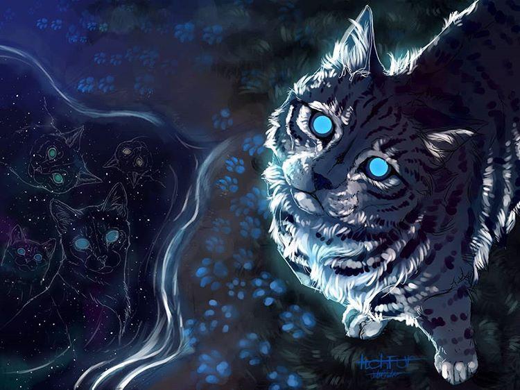 Jayfeather By The Moonpool Warrior Cats Art Warrior Cat Memes