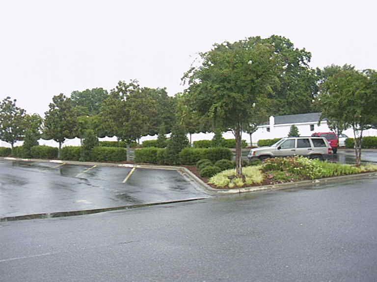Image Result For Parking Lot Landscaping Ideas