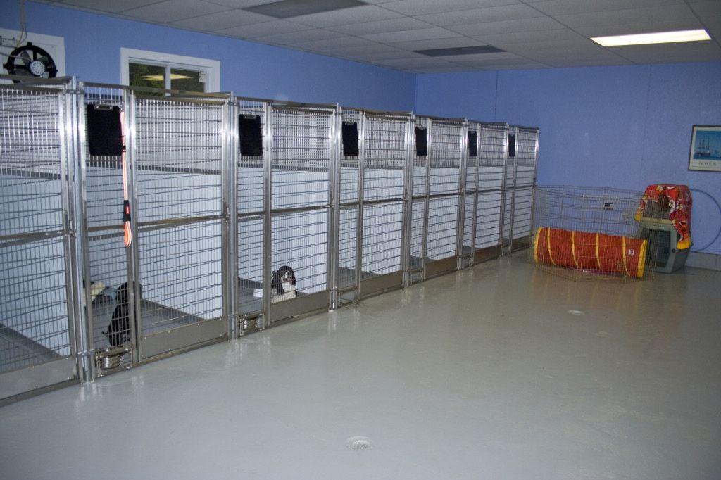 Veterinarians Kennels Dog Kennel Dog Boarding Kennels Indoor Dog Kennel