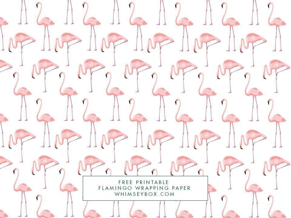 Free Printable Flamingo Gift Wrap Flamingo Printables Flamingo