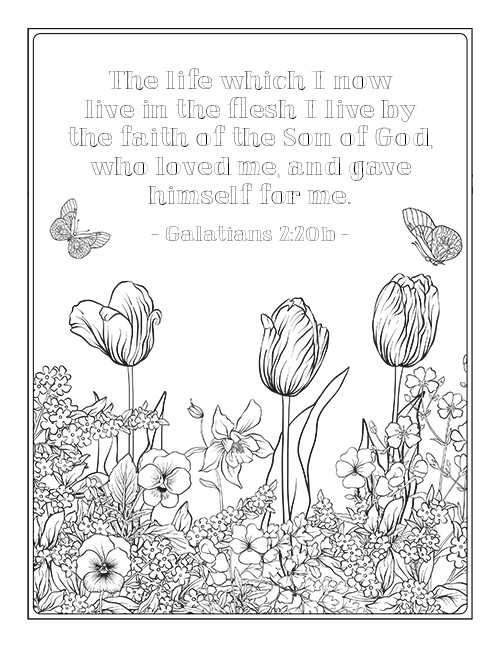 Galatians Bible Study Week 2 Part 1 Chapters 3 4 Bible Verse Coloring Page Bible Coloring Sheets Bible Coloring Pages