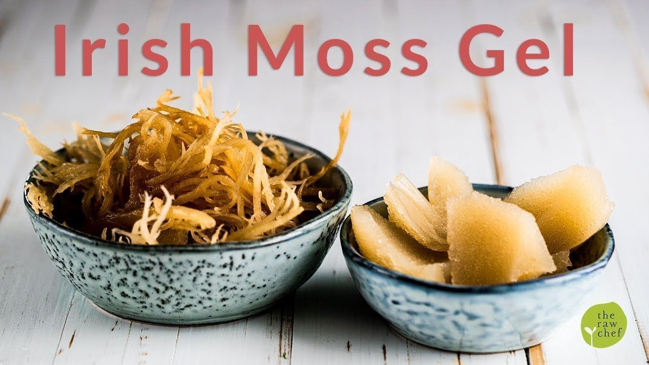 How To Make Irish Sea Moss Gel #irishsea How To Make Irish Sea Moss Gel #irishsea How To Make Irish Sea Moss Gel #irishsea How To Make Irish Sea Moss Gel #irishsea How To Make Irish Sea Moss Gel #irishsea How To Make Irish Sea Moss Gel #irishsea How To Make Irish Sea Moss Gel #irishsea How To Make Irish Sea Moss Gel #irishsea