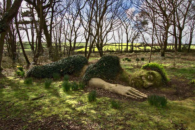 5ffa0113568758e1046ff6f8cb9d5d3e - Fowey To Lost Gardens Of Heligan