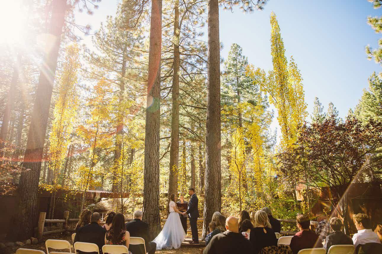 Revive Coffee Wine Garden Weddings Lake Tahoe Wedding Venue South Lake Tahoe Ca 96150 Lake Tahoe Wedding Venues South Lake Tahoe Wedding Venues Tahoe Wedding Venue