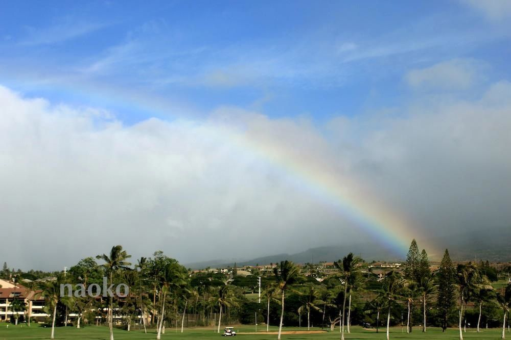 Kaanapali,Maui HI