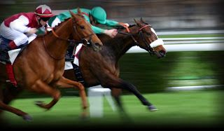 Horse racing betting online uk pharmacies nfl point spread betting explained photos
