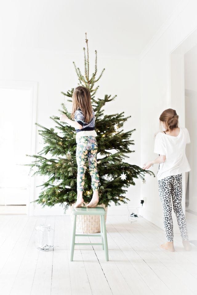 christmas tree Christmas Pinterest Christmas, Xmas and