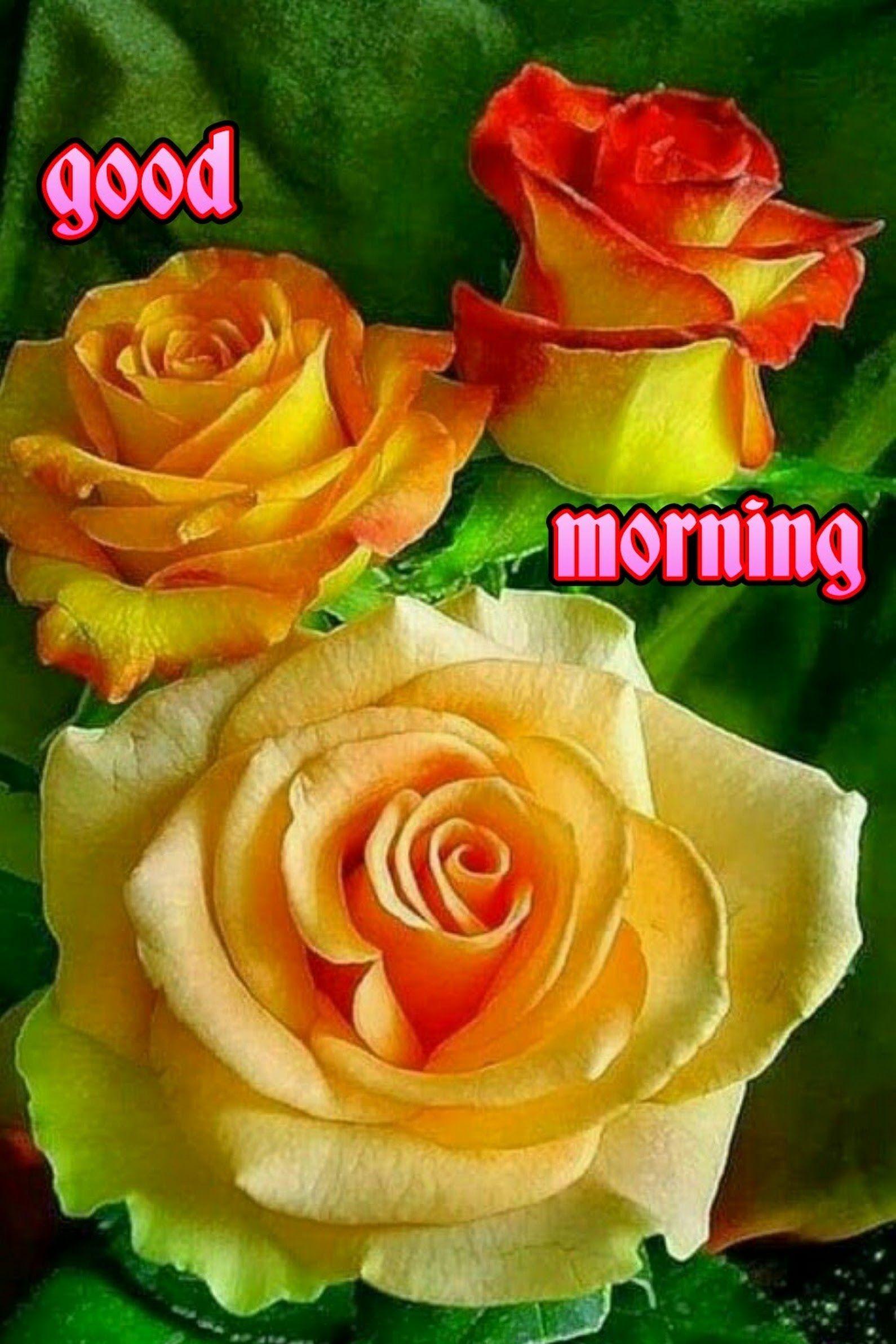 Good Morning Kishor Ekatpure Google Good Morning Pinterest