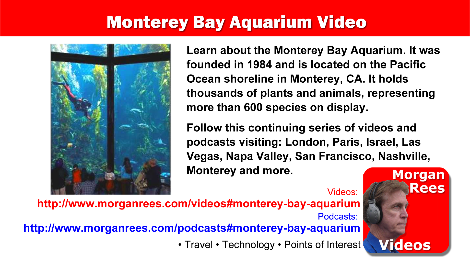 Monterey Bay Aquarium video by Morgan Rees in 2020 ...