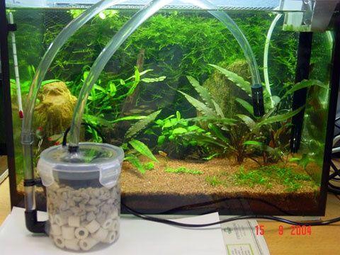 Diy Mini Canister Aquascape Diy Aquarium Diy Aquarium