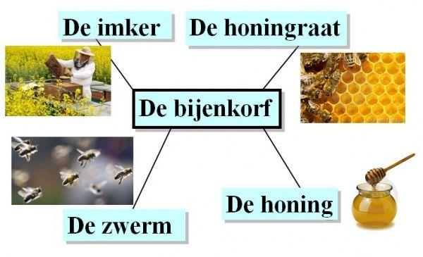 Bijenkorf (met afbeeldingen