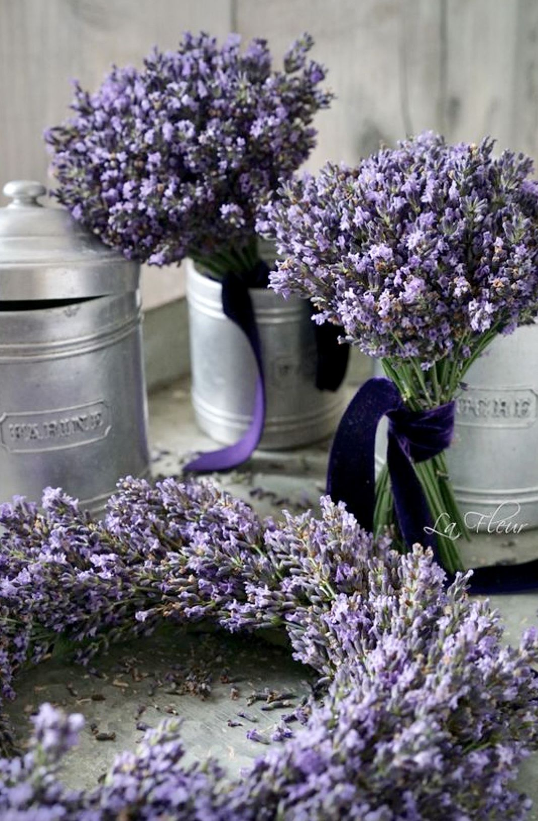 Pin by Stormy Weather on Themes Chateau Lavende