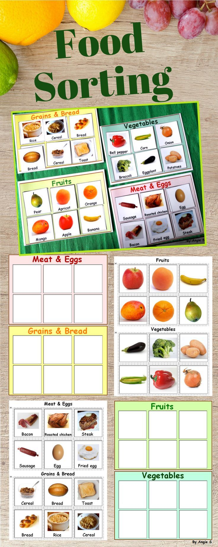 Food groups sort and classify group meals learning