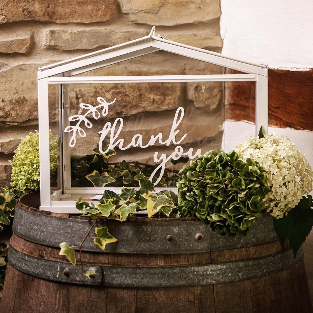 thank you box f r karten und geschenke ikea gew chshaus kartenbox pinterest. Black Bedroom Furniture Sets. Home Design Ideas