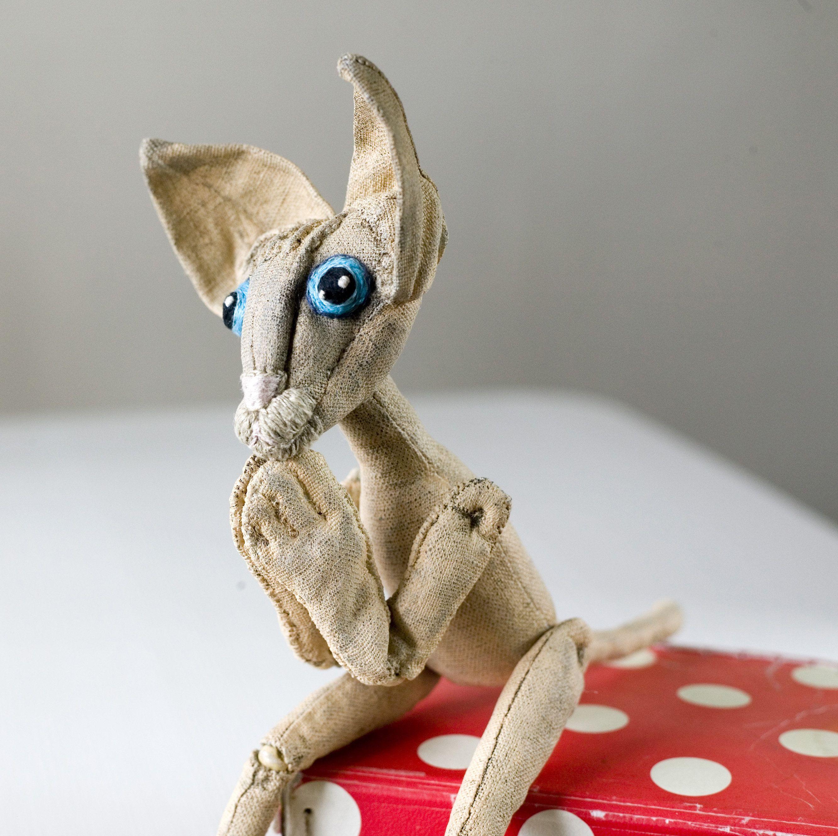 Sphynx cat by KTZAY ポートレート art Sphynxcat cutecat