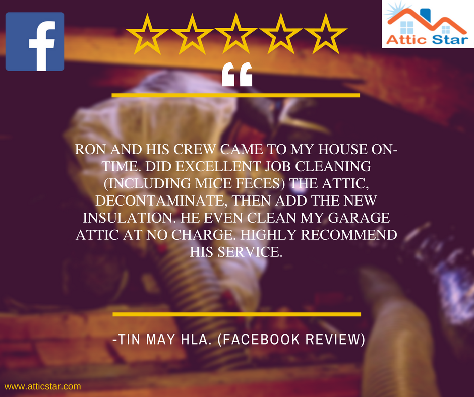 Thank You For The 5 Star Review Tin May The Employees Here At Homeguard Appreciate Your Business People Pride Insulation Removal Insulation How To Remove