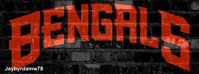 Cincinnati Bengals Who-Dey football team sport images