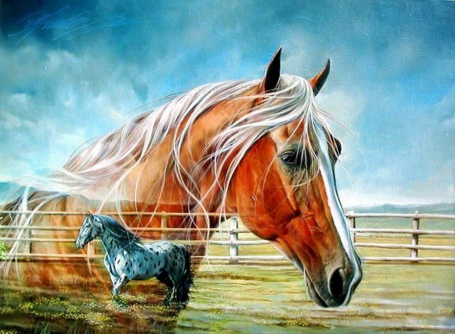 Pinturas cuadros cuadros con caballos de pintor for Pintor y muralista colombiano