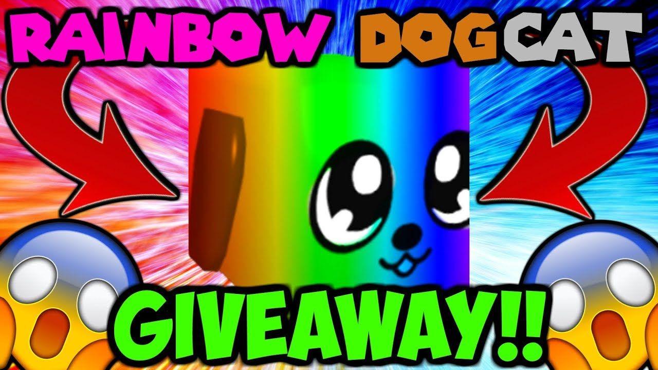 Rainbow Dogcat Giveaway New Best Secret Pet Bubble Gum Simulator Bubble Gum Roblox Buble Gum