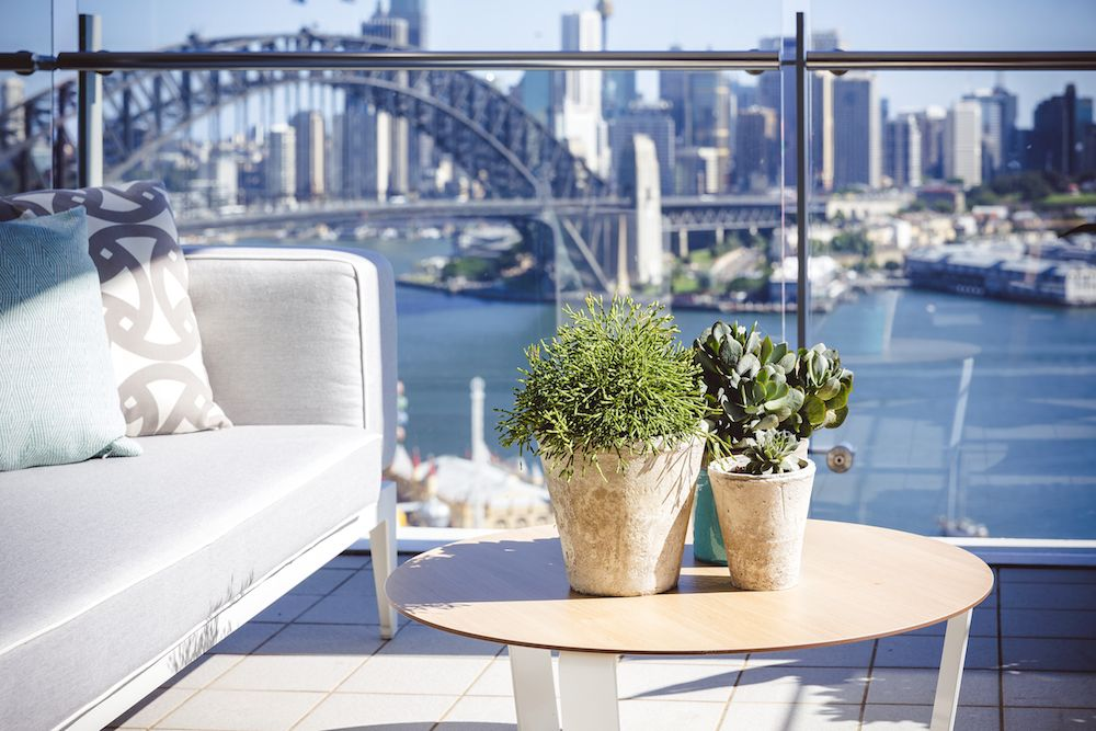 Contemporary balcony garden design in North Sydney with ...