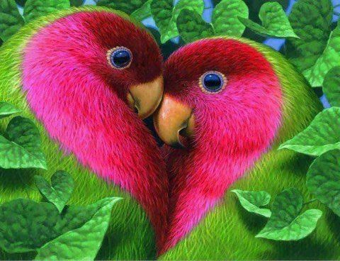 even birds are creative to express love :)