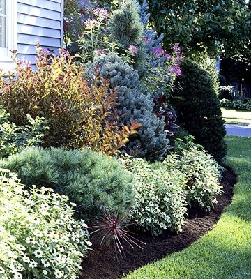 Use Evergreens To Make An Impact Evergreen Landscape 400 x 300