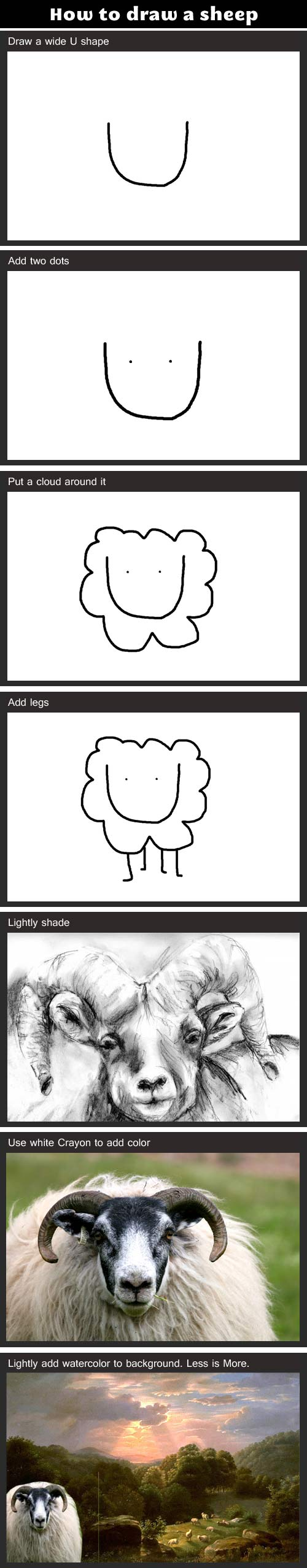 How to draw a sheep… | Funny stuff | Pinterest | Funny sheep ...