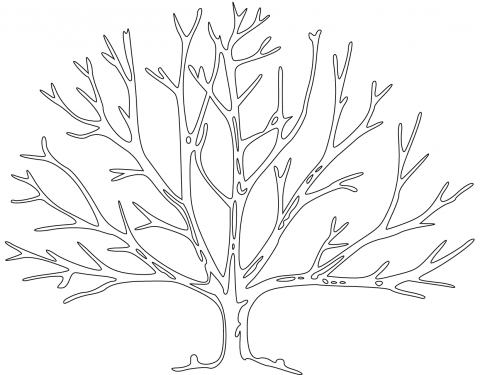Bare Tree Coloring Page Pages Ausmalbilder Ausmalen Kaligraphie