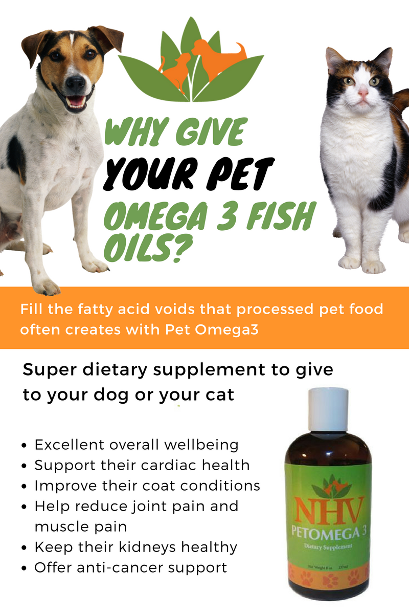 Why give your pet omega 3 fish oils? If you have been